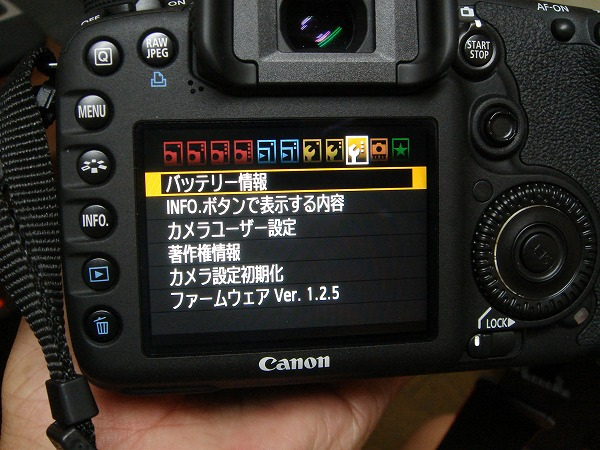 DSC04746.jpg